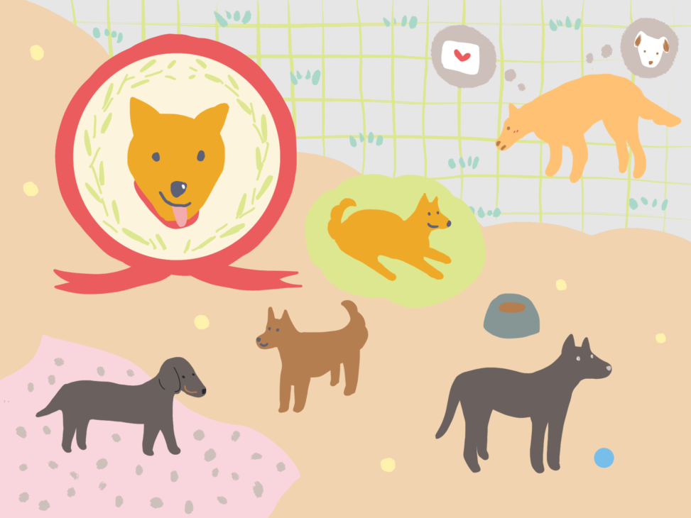 dogs 犬のイラスト